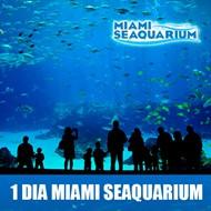 Ingresso 1 dia Miami Seaquarium - entrada REGULAR - visite o melhor oceanário da Florida! - CRIANÇA ( 03 à 09 anos) - Válido para 2020